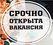 Личный ассистент руководителя Ставрополь